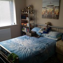 accomodation - sam room