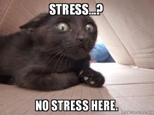 elijah stress